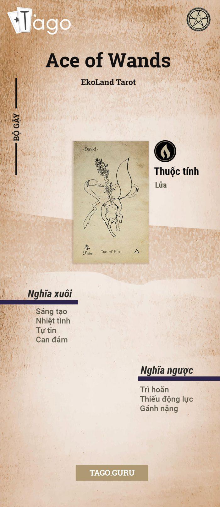 TAGO-Info-Bai-Tarot-Ace-of-wands